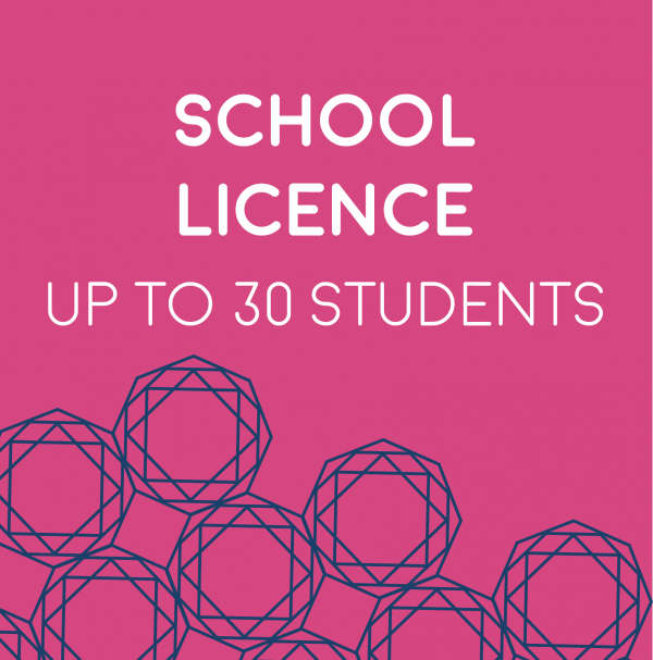 School licence up to 30 students